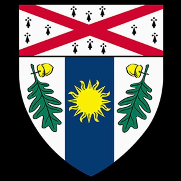 nav logo for YSE